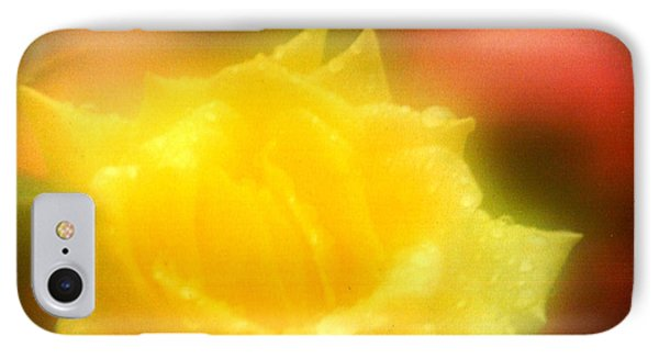 IPhone Case featuring the photograph New Orleans  Yellow Rose Of Tralee by Michael Hoard