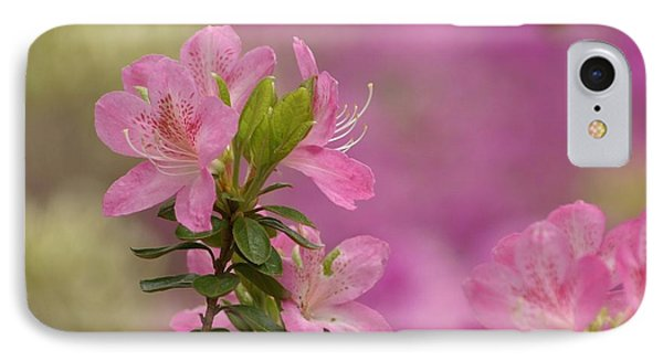 Then Spring Arrived IPhone Case by Living Color Photography Lorraine Lynch