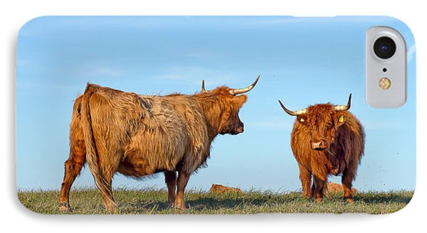 There Can Be Only One Highland Cow IPhone Case