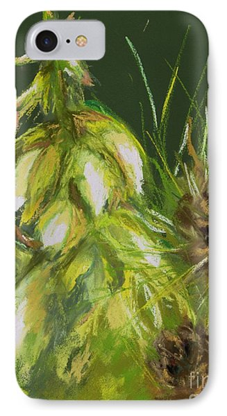Theres A Yucca In My Yard Phone Case by Frances Marino