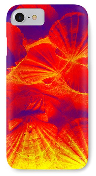 IPhone Case featuring the photograph Thermal Shells by Hanza Turgul