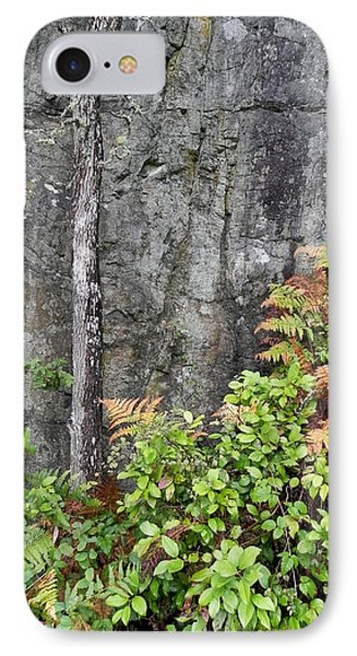 IPhone Case featuring the photograph Thetis In Fall by Cheryl Hoyle