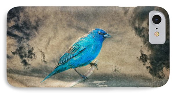 IPhone Case featuring the photograph They Call Me Blue by Linda Segerson