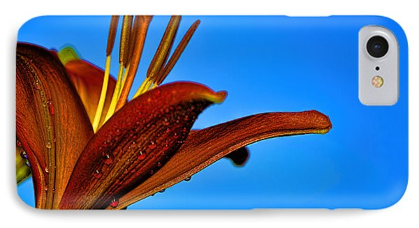 Thirsty Lily In Hdr Art IPhone Case by Lesa Fine