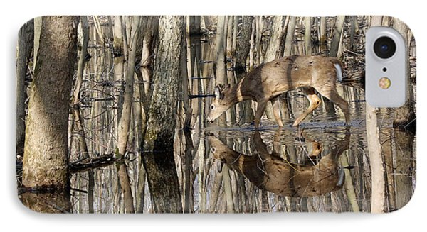 Thirsty Pause IPhone Case by Lorna Rogers Photography