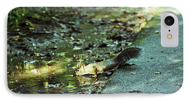 IPhone Case featuring the photograph Thirsty Squirrel by Lorna Rogers Photography