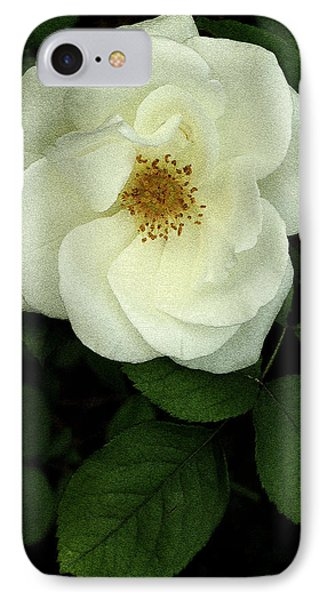 IPhone Case featuring the photograph This Rose For You by James C Thomas