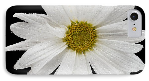 This White Daisy IPhone Case by Steve Gadomski