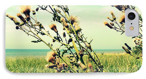 Thistle On The Beach  Phone Case by Michelle Calkins