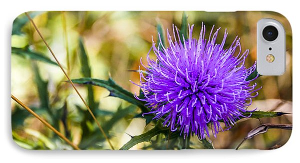 IPhone Case featuring the photograph Thistle by Phil Abrams