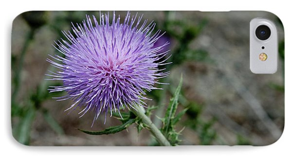 IPhone Case featuring the photograph Thistle by Rod Wiens