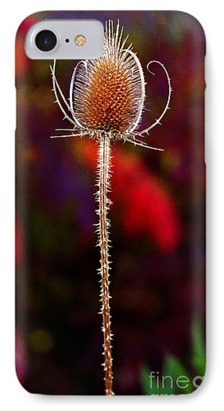 IPhone Case featuring the photograph Thistle by Tom Brickhouse