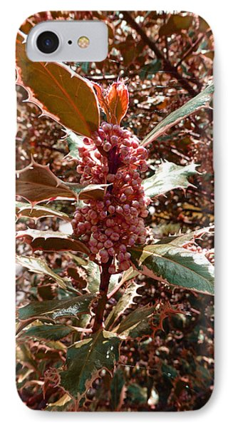IPhone Case featuring the photograph Thorn Berry by Laurie Tsemak