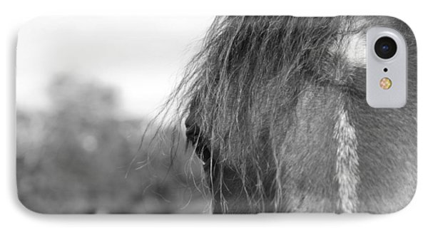 Thoroughbred B/w IPhone Case by Jennifer Ancker