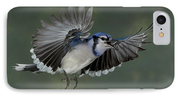 IPhone Case featuring the photograph Those Seeds Are For My Larder by Gerry Sibell