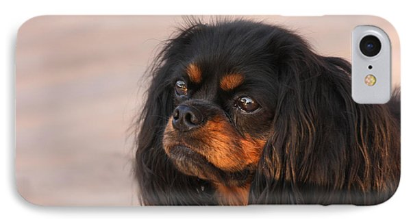 Thoughtful Cavalier IPhone Case