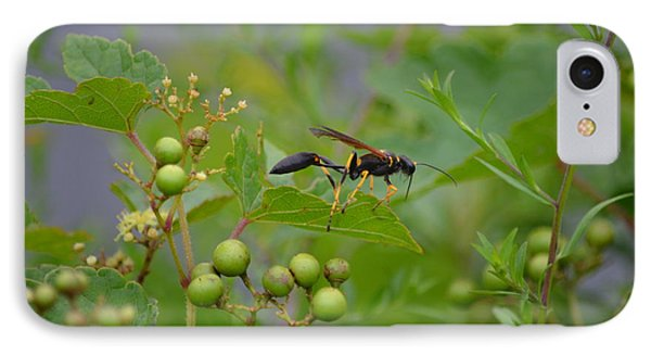 IPhone Case featuring the photograph Thread-waist Wasp by James Petersen