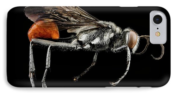 Thread-waisted Wasp IPhone Case