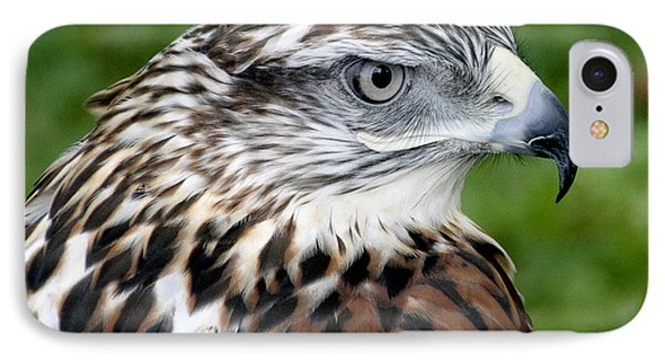 The Threat Of A Predator Hawk IPhone Case