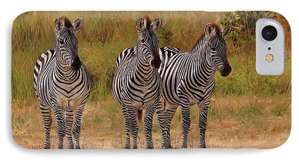 Three Amigos IPhone Case by David Stribbling