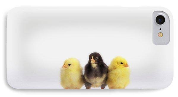 Three Baby Chicks In A Rowbritish Phone Case by Thomas Kitchin & Victoria Hurst