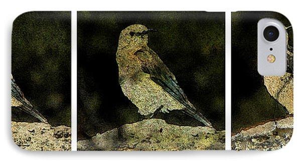 Three Birds Phone Case by John Goyer