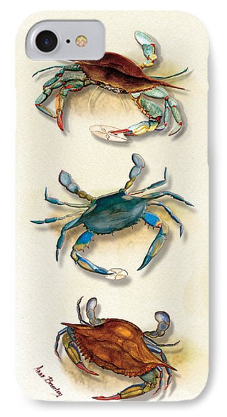Three Blue Crabs IPhone Case by Anne Beverley-Stamps