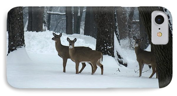 IPhone Case featuring the photograph Three Deer In Park by Eric Switzer