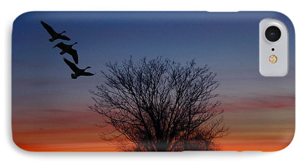 Three Geese At Sunset Phone Case by Raymond Salani III