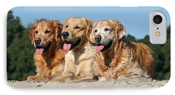 Three Golden Retriever Dogs Lying In Sand IPhone Case by Dog Photos