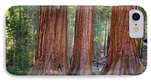 Three Graces Yosemite IPhone Case