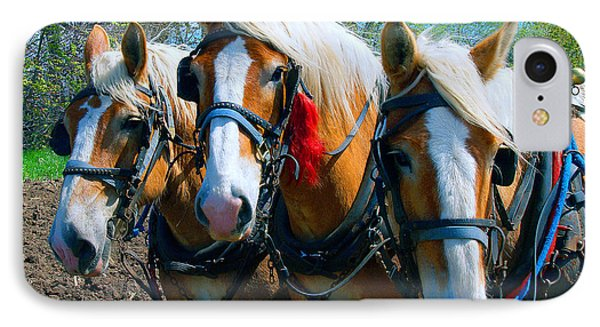 IPhone Case featuring the photograph Three Horses Break Time  by Tom Jelen