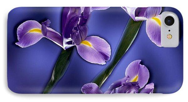 Three Iris Xiphium IPhone Case