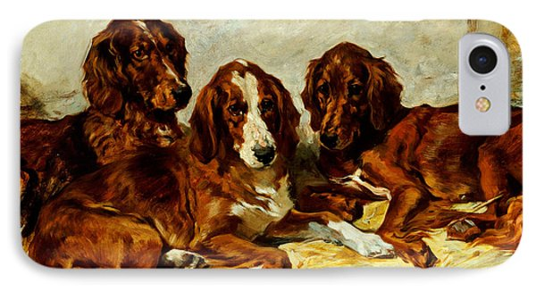 Three Irish Red Setters IPhone Case by John Emms