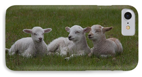 Three Lambs Phone Case by Richard Baker