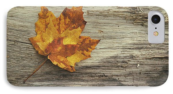 Three Leaves IPhone 7 Case by Scott Norris
