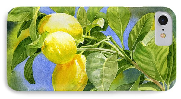 Three Lemons IPhone Case by Sharon Freeman