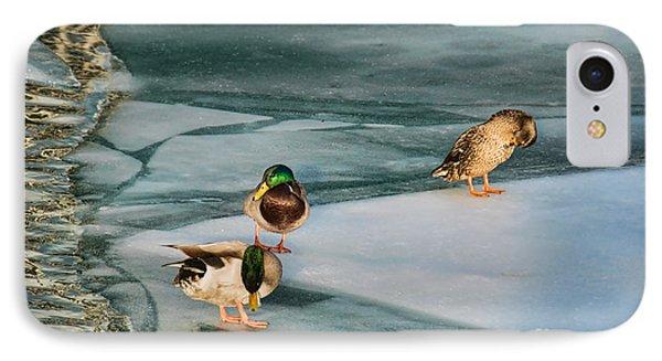 Three Mallards On Partly Frozen Lake IPhone Case by Gerda Grice
