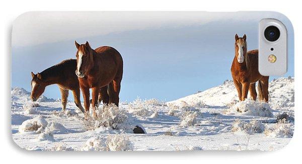 Three Mustangs In Snow IPhone Case