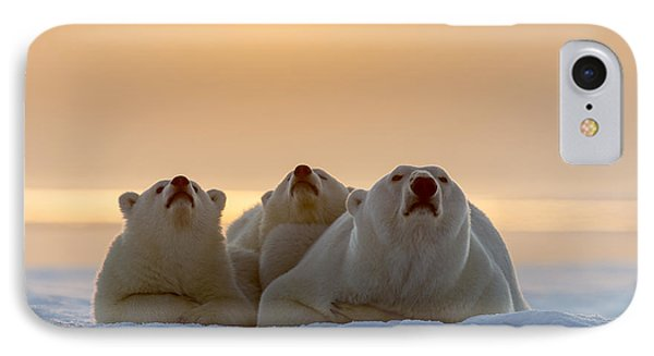 Three Noses IPhone Case by Tim Grams