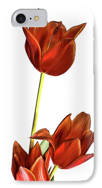 Three Orange Red Tulips IPhone Case by Linda Matlow