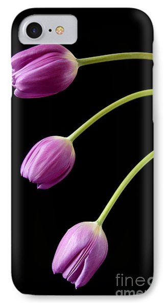 Three Purple Tulips IPhone Case by Eden Baed