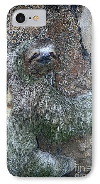 Three Toed Sloth IPhone Case by Anne Rodkin
