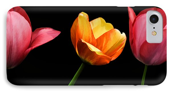 Spring Tulips IPhone Case by Steven Michael