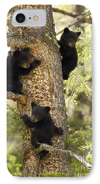 Family Tree IPhone Case by Aaron Whittemore