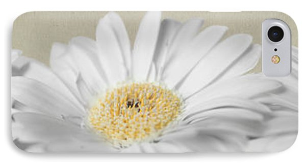 IPhone Case featuring the photograph Three White Daisies by Eden Baed