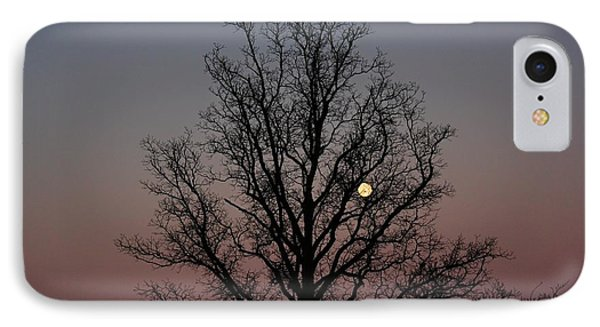 Through The Boughs Landscape IPhone Case by Dan Stone