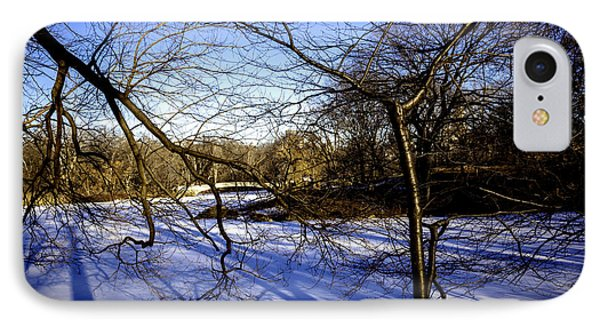 Through The Branches 4 - Central Park - Nyc Phone Case by Madeline Ellis