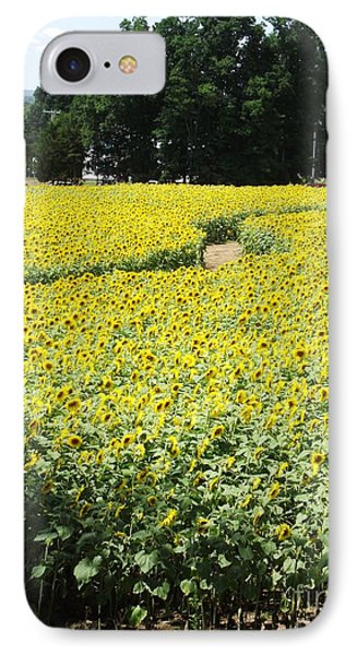 Through The Sunflowers IPhone Case