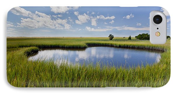 Tidal Pool Image Art IPhone Case